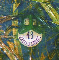 Камоцкі Алесь. 48